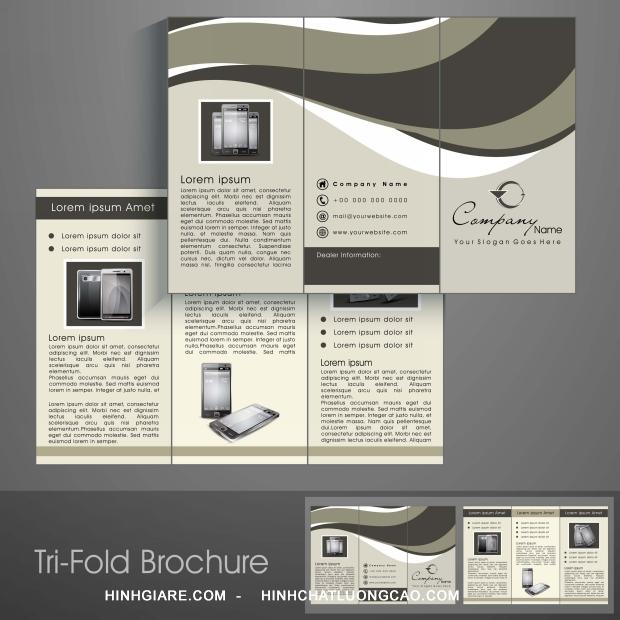 3-fold_1100017078-1013int