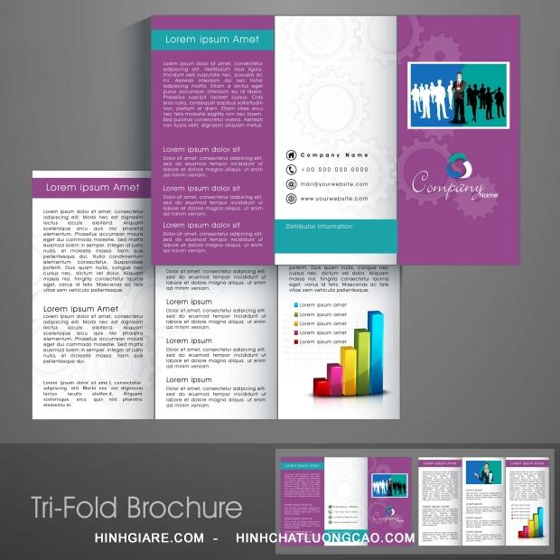 3-fold_1100013953-1013int