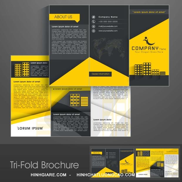 3-fold_1100013954-1013int