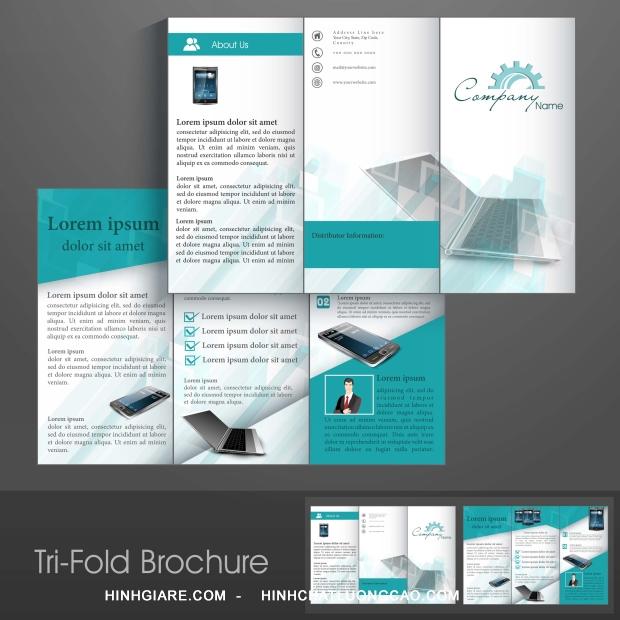 3-fold_1100013955-1013int