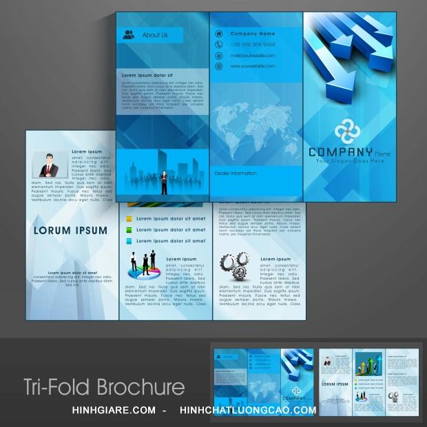 3-fold_1100013956-1013int