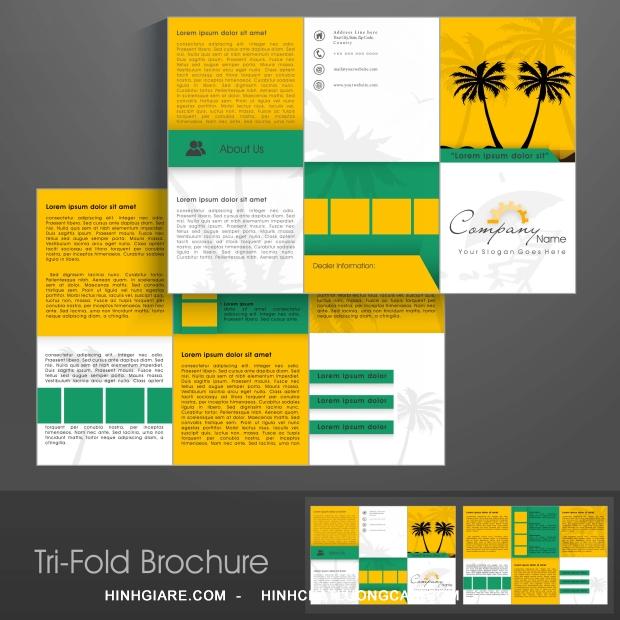 3-fold_1100015738-1013int