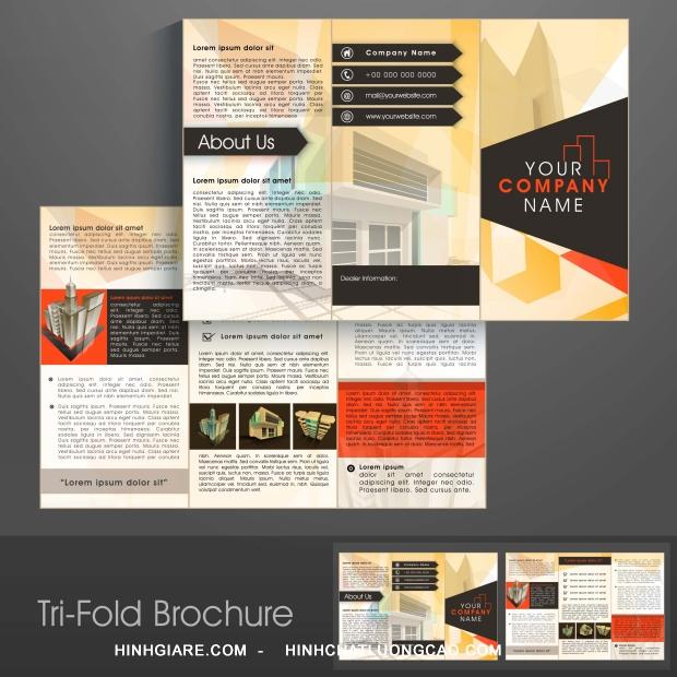 3-fold_1100015741-1013int