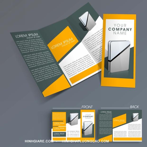 3-fold_1100016979-1013int