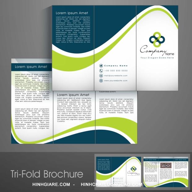 3-fold_1100017077-1013int